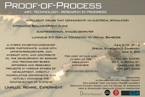 Proof-of-Process Flyer
